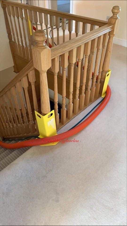 carpet cleaners wokingham